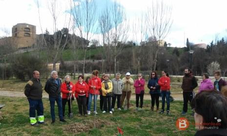 dia del árbol Benavente 2016 (3)
