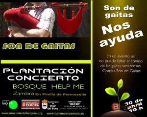 SON DE GAITAS - MOVIMIENTO HELP ME - ZAMORA