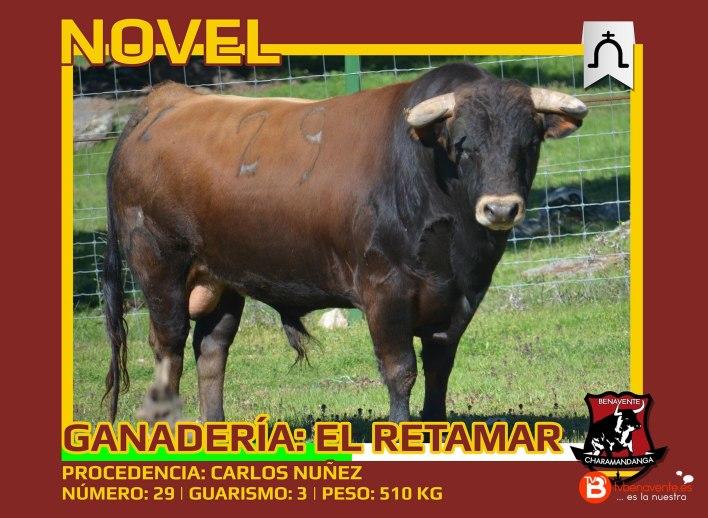 Toros Condes Duque Benavente 2016 - Novel - Charamandanga