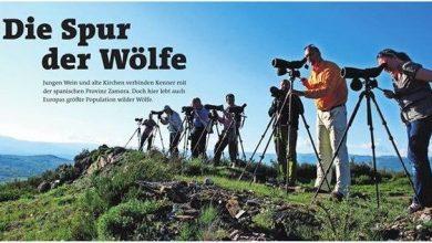 Photo of Periodistas alemanes destacan el atractivo de la provincia de Zamora