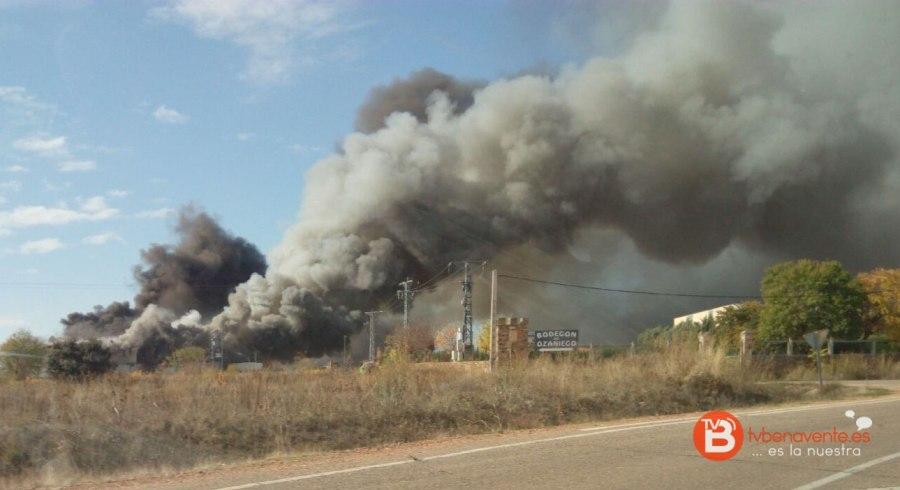incendio-granja-avicola-iberavi-en-alija-del-infantando-3