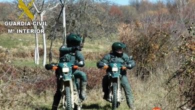 Photo of Desarticulado un grupo criminal dedicado a cometer delitos contra la propiedad en Sanabria