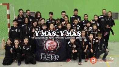 Photo of El palmarés del Quesos el Pastor Club Taekwondo Benavente no para de crecer