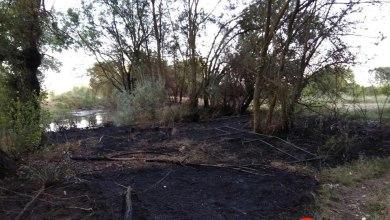 Photo of Incendio en la zona del Sequedal que afectó a un caseto de aperos