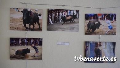 """Photo of Exposición """"La Esencia del Festejo Popular"""" en Castrogonzalo"""