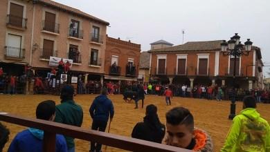 Photo of Sale la primera vaca en Villalpando