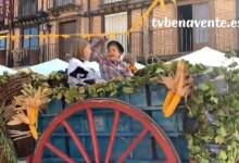 """Photo of XVI Tradicional """"Desfile de Carros"""" en La Fiesta de la Vendimia 2019 de Toro"""