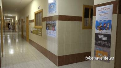 Photo of Carrera Escolar Solidaria del colegio Virgen de la Vega