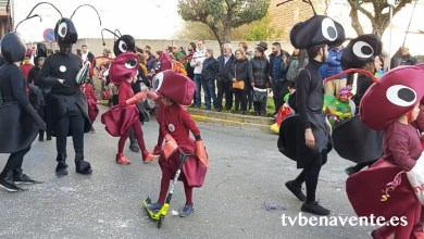 Photo of Desfile de Carnaval de La Bañeza