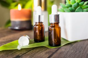 Terapia floral: Cuidados e suporte com idosos por Denise Giarelli