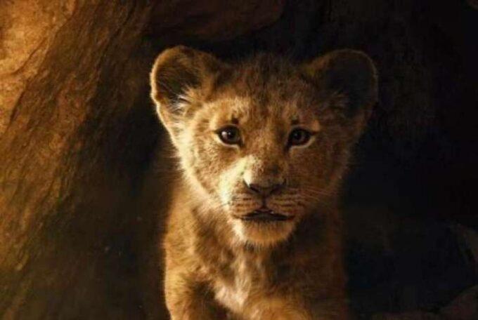 O Rei Leão conquista público e é a maior estreia da semana nos cinemas