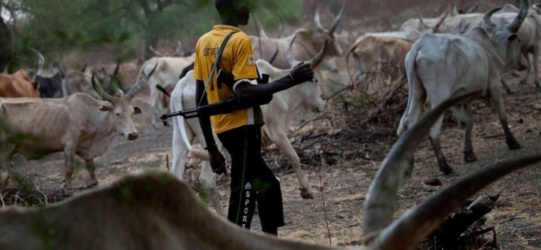 Herdsmen kill another farmer in Ekiti - TVC News Nigeria