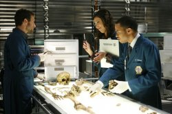 The Jeffersonian team