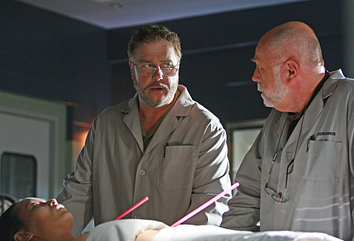 William Petersen, Robert David Hall - CSI
