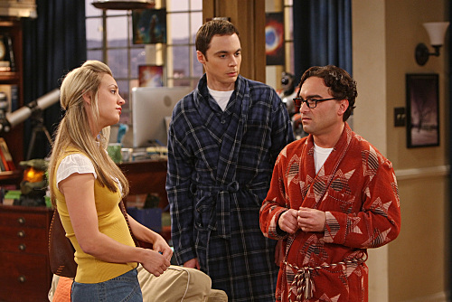 THE BIG BANG THEORY - The Plimpton Stimulation