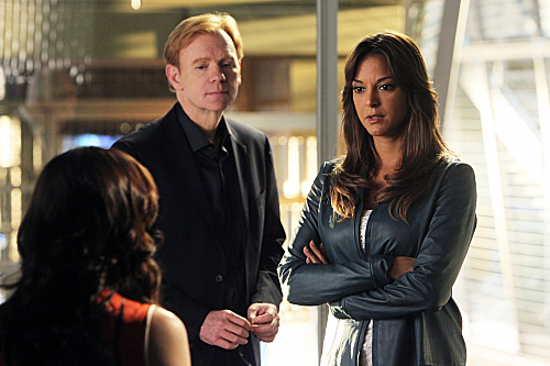 CSI: Miami Law and Disorder