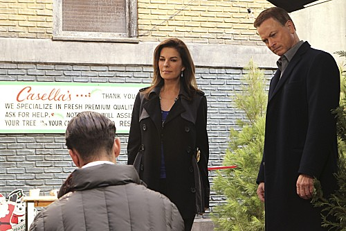 CSI: NY Season 9 Episode 10 The Real McCoy (1)