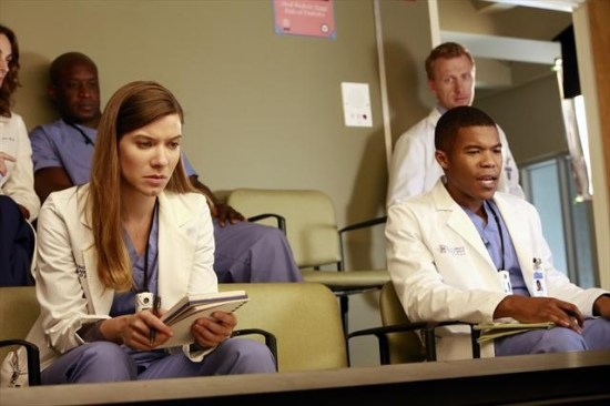 Grey's Anatomy Season 9 Episode 8 Love Turns You Upside Down (8)