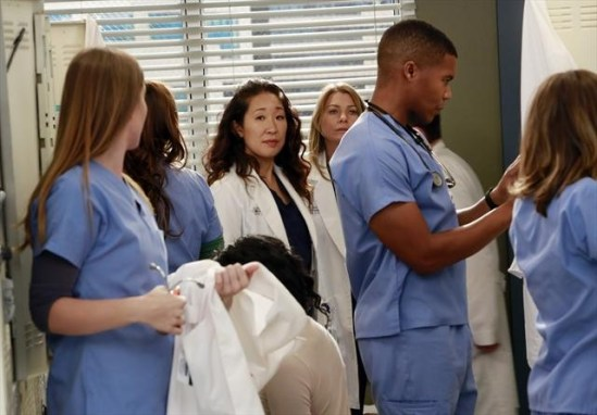 Grey's Anatomy Season 9 Episode 8 Love Turns You Upside Down (5)