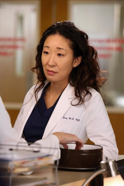 Grey's Anatomy Season 9 Episode 11 The End is the Beginning is the End (4)