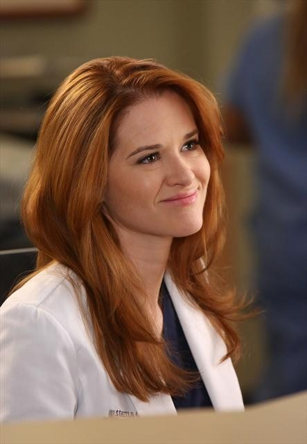 Grey's Anatomy Season 9 Episode 11 The End is the Beginning is the End (3)