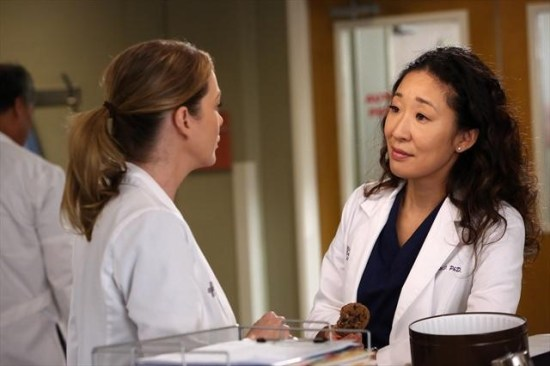 Grey's Anatomy Season 9 Episode 11 The End is the Beginning is the End (2)