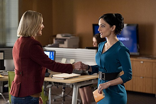 "The Good Wife Season 4 Episode 16 ""Runnin' With The Devil"""