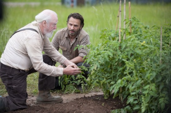 The Walking Dead Season 4 Episode 1 30 Days Without an Accident (3)