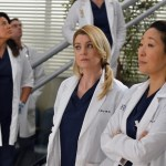 Grey's Anatomy Season 10 Episode 14 You've Got To Hide Your Love Away (1)