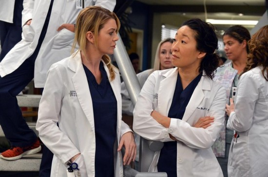 Grey's Anatomy Season 10 Episode 14 You've Got To Hide Your Love Away (4)