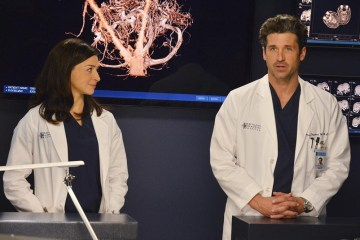 Grey's Anatomy Season 10 Episode 22 We Are Never Getting Back Together (5)