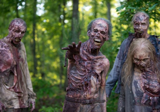 The Walking Dead First Time Again (8)