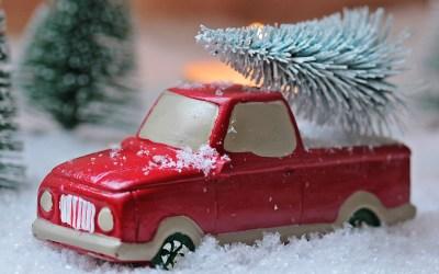 Wood Mountain Christmas Tree Fundraiser