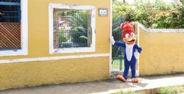 Sair na rua e dar de cara com o Pica-Pau? Coisa normal na terça-feira (12) para os moradores de Olinda