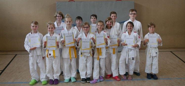 Judo: Zweite Gürtelprüfung des Jahres