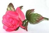 20. Роза 1800 руб.