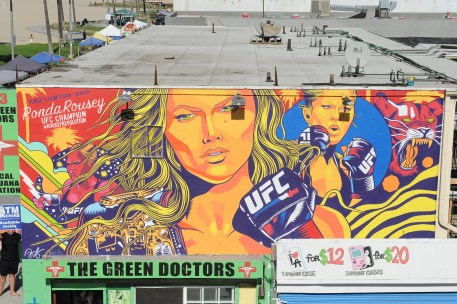20151010_Rousey_Mural.73