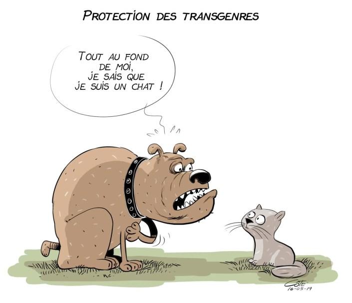 La caricature d'André-Philippe Côté qui a fait scandale.