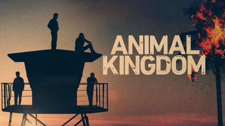 Animal Kingdom saison 5