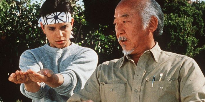 Cobra Kai Season 2 Karate Kid