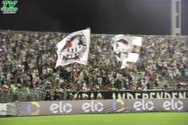 Botafogo 1x0 River-PI (92)