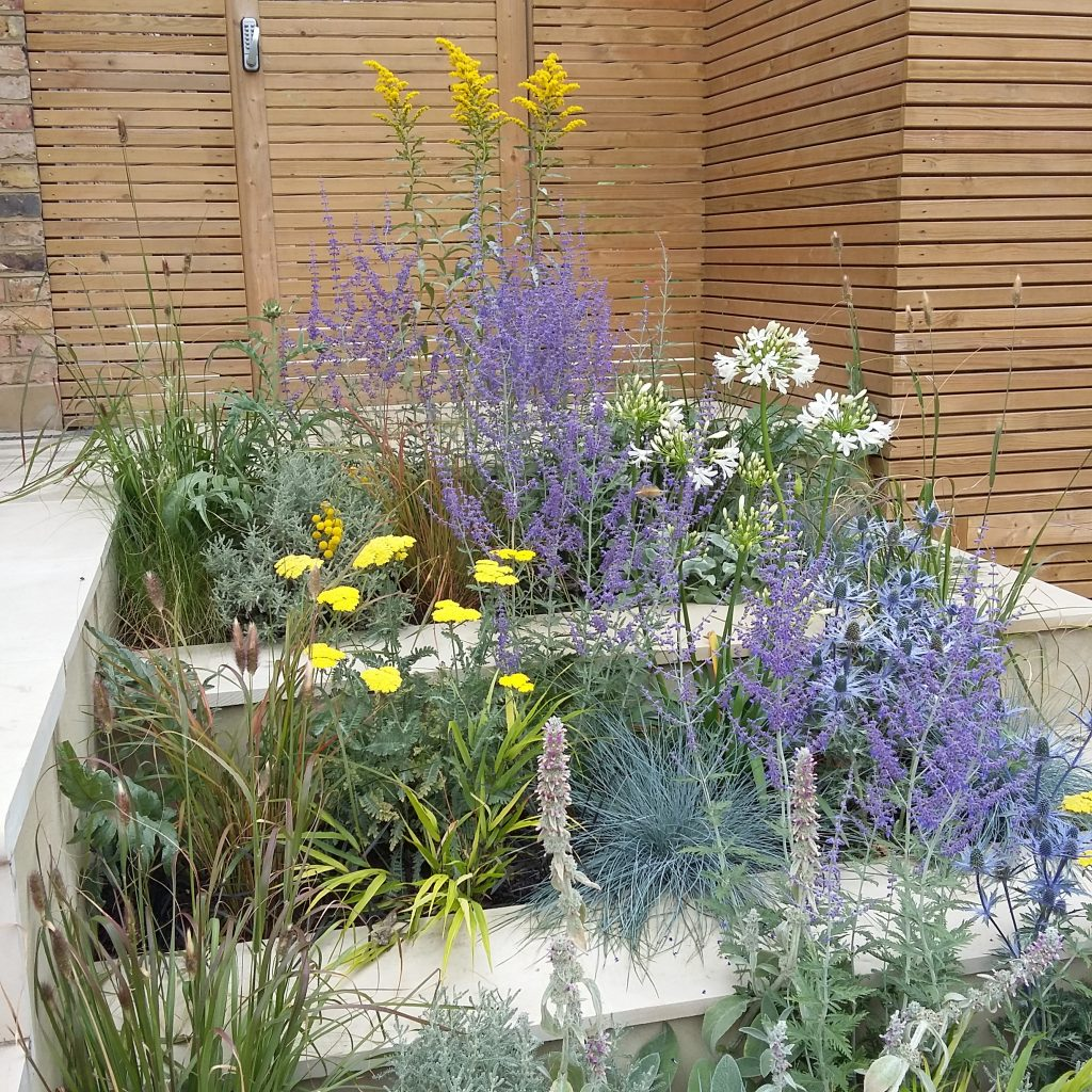 Tiered beds with drought tolerant planting
