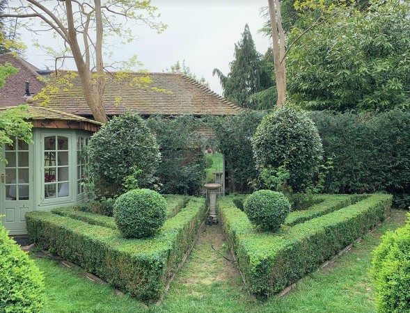 Buxus and Laurus nobilis topiary 01