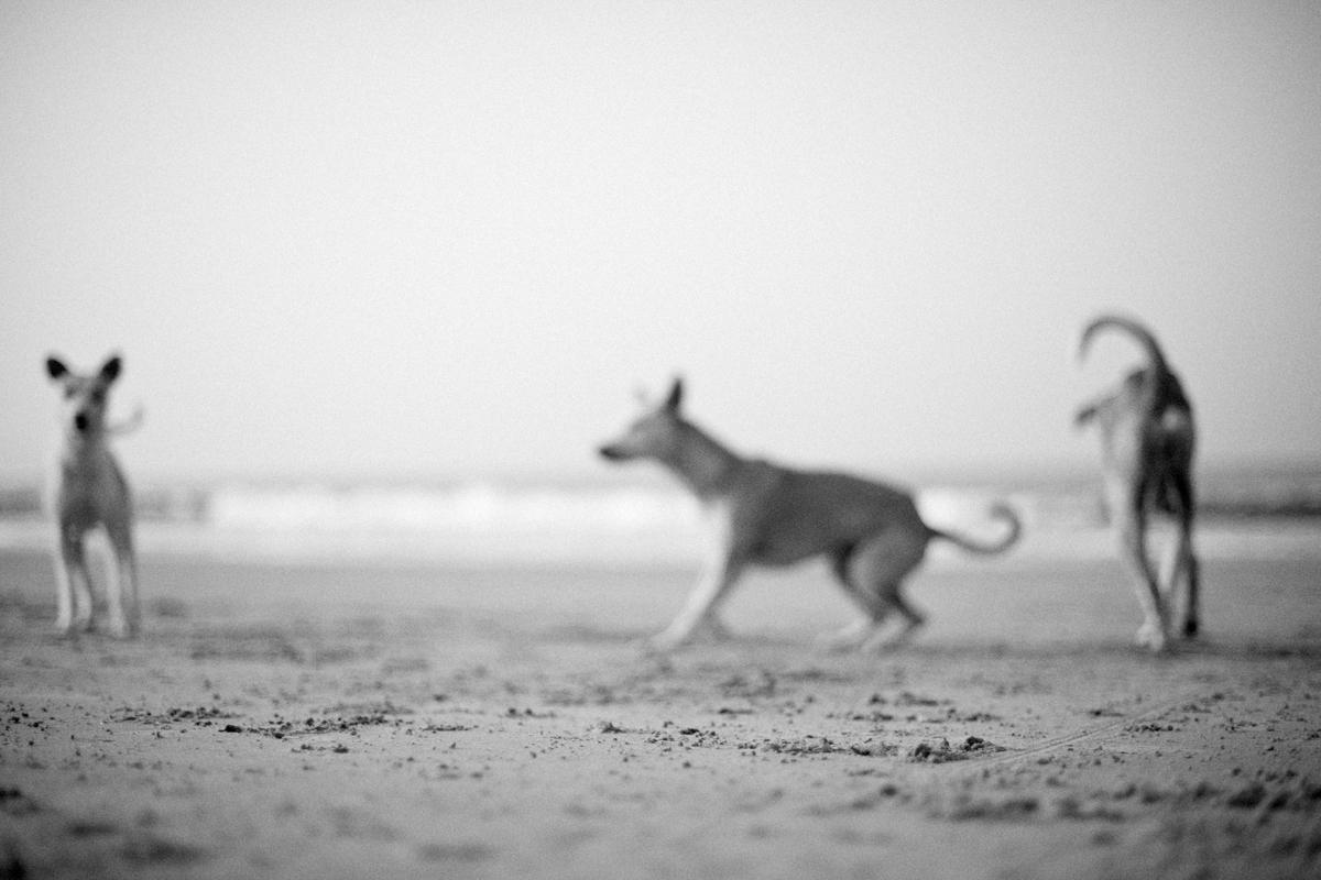 Fotograf_Nicki_Twang_beachbum_007