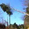 Maltempo: 4mila fulmini in due ore sulla Toscana. Tetti scoperchiati e caduta di alberi a Prato e nel Grossetano