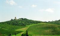 Turismo, online visittuscany.com, il nuovo sito di promozione turistica della Toscana