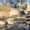 Firenze: videoispezione degli affluenti dell'Arno. Il via dal sindaco Nardella