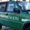 Traffico rifiuti: 6 arresti. Truffa da 4 milioni a danno della Regione Toscana