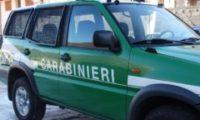 Rifiuti: perquisite sette aziende accusate di traffico illecito. Inchiesta della Dda di Firenze