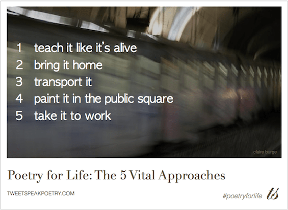 Poetry For Life The 5 Vital Approaches